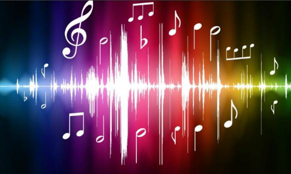 música333