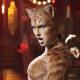 taylorcats2-min